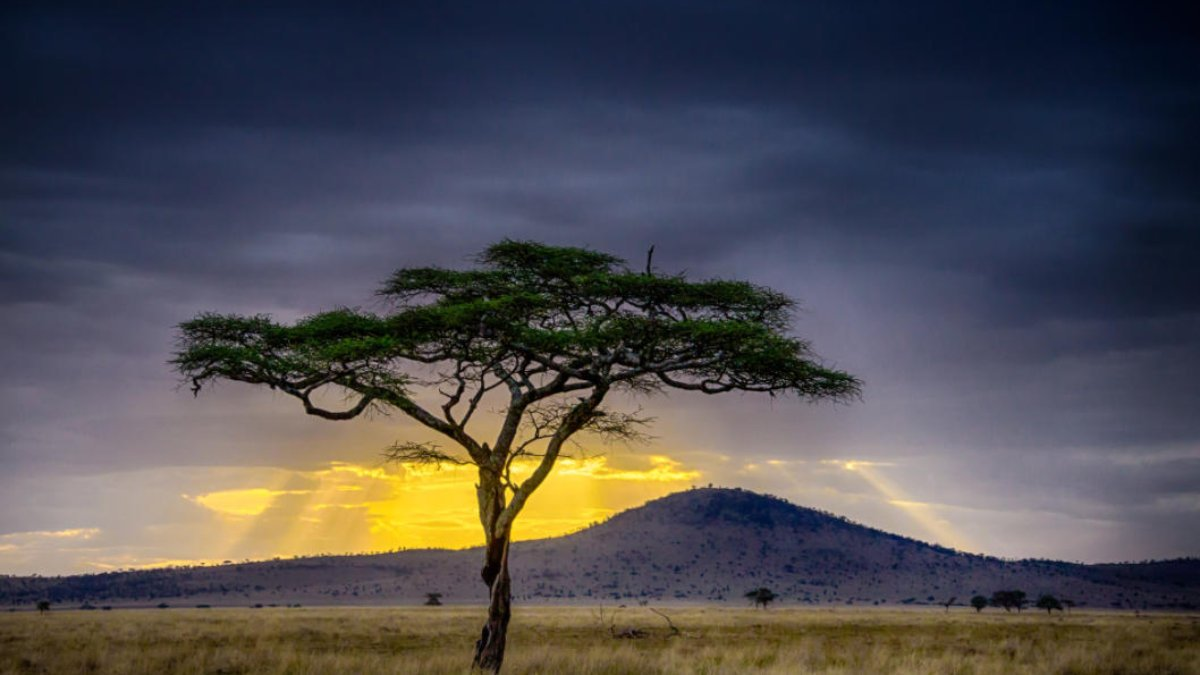 Sunset over countryside in Africa